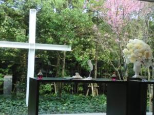 チャペル桜