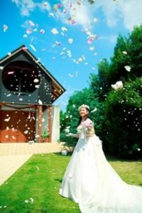 結婚式が無料になるフェア!!