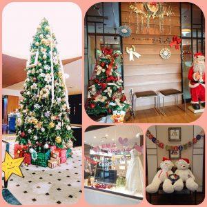 今年もクリスマスツリーが皆様をお迎えします